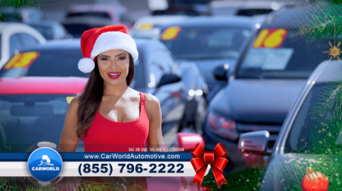 Car-World-Model-Holiday-Used-Car-Dealership